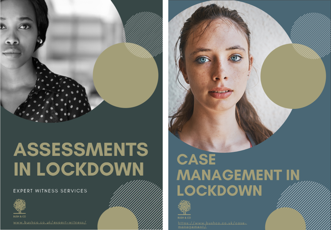 Expert Witness & Case Management in lockdown: A specialist's view